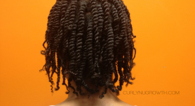 Two-Strand Twists for Locs