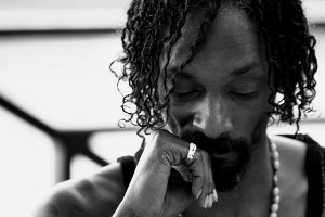 Snoop Dogg Starter Locs with Twists - CURLYNUGROWTH.com