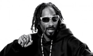 SNOOP DOGG COMBINED LOCS - CURLYNUGROWTH.COM