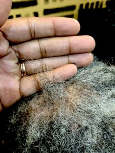 Breakage at the Root of Locs