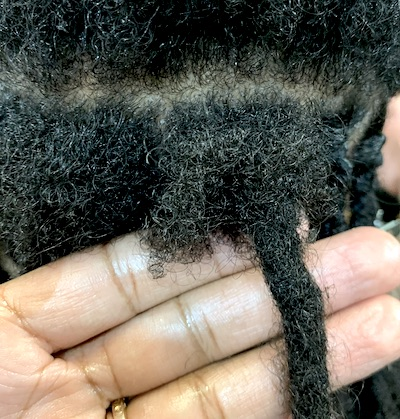 Hair Growing Away From Locs and Not Breaking